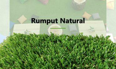 Jual Rumput Sintetis Natural